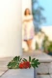 девушка ягоды золы Стоковое Изображение