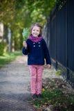 Девушка Preschooler в парке осени с кленовыми листами Стоковая Фотография
