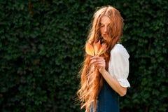 Девушка redhead портрета осени естественная с одичалыми лист виноградины Стоковое Изображение