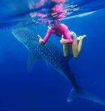Девушка snorkeling с китовой акулой Стоковое Изображение