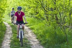 Девушки велосипед в лесе Стоковое Изображение