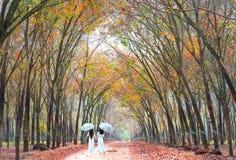 2 девушки в длинном платье для того чтобы покрыть зонтик держа руки, идя конец дороги в резиновом лесе Стоковое Фото