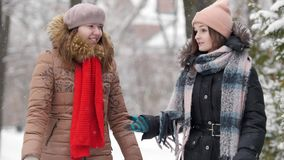 2 девушки в зиме идя и говоря друг с другом Обсудите что-то сток-видео