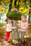 Девушки в парке осени Стоковые Изображения RF