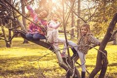 3 девушки в парке сидя на дереве Стоковая Фотография