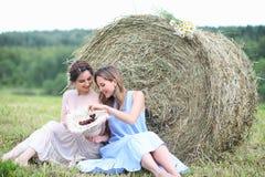 2 девушки в платьях в поле лета Стоковое Изображение