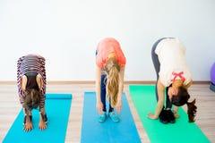 Девушки в спортзале Стоковые Изображения RF