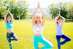 Девушки делая йогу в парке Стоковые Фотографии RF