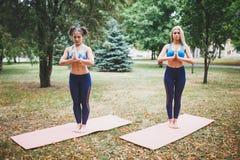 2 девушки делая йогу outdoors Стоковое Изображение