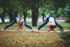 2 девушки делая йогу outdoors Стоковое фото RF