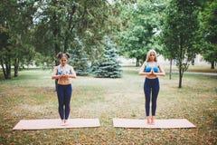 2 девушки делая йогу outdoors Стоковая Фотография RF