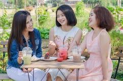 Девушки есть торт и питье совместно на кафе Стоковое Фото