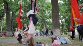 Девушки делая йогу в воздухе в перевернутом представлении в parkland, молодые женщины вися на гамаке ленты для воздушной йоги, сток-видео