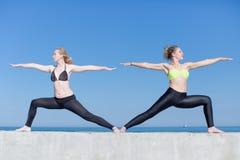 Девушки делая йогу outdoors Стоковое Фото