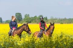 Девушки едут лошадь Стоковая Фотография