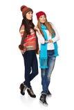 Девушки зимы смотря прочь Стоковая Фотография