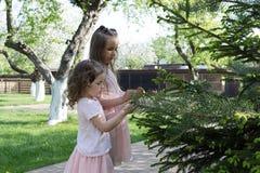 Девушки играя в дворе Стоковые Изображения