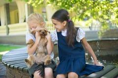 2 девушки играя с собакой Стоковые Изображения
