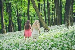 2 девушки идя весной лес Стоковые Изображения