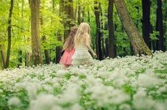 2 девушки идя весной лес Стоковая Фотография