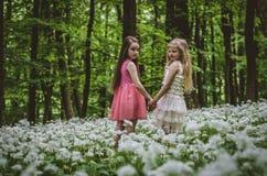2 девушки идя весной лес Стоковые Изображения RF