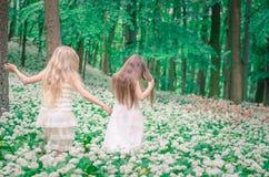 2 девушки идя весной лес Стоковое Изображение RF