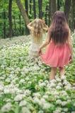 2 девушки идя весной лес стоковые фото