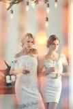 Девушки красоты моды сексуальные Рекордер и ворон Стоковое Фото