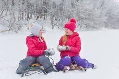 Девушки наслаждаясь днем играя в лесе зимы Стоковая Фотография
