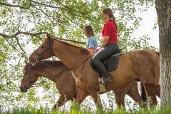 Девушки на лошади Стоковые Изображения RF