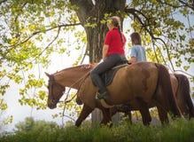 Девушки на лошади Стоковое Фото