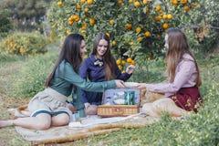 Девушки на пикнике в оранжевом саде Стоковые Изображения RF
