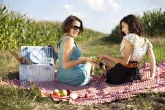 Девушки на пикнике Стоковая Фотография RF