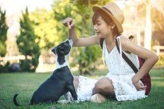 Девушки на поле с маленькими собаками на потехе Стоковые Фото