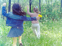Девушки на луге Стоковые Изображения RF