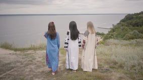 3 девушки нося длинное платье моды лета идя на поле на фоне озера или реки 2 сток-видео