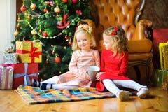 Девушки около праздничного дерева Стоковое Изображение