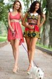 Девушки пар жизнерадостные в улице Стоковые Изображения RF