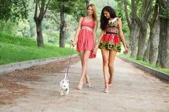 Девушки пар жизнерадостные в улице Стоковая Фотография