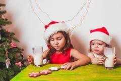 2 девушки приближают к рождественской елке Стоковое Изображение