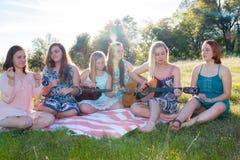 Девушки сидя совместно в травянистом поле поя и играя музыку Стоковые Изображения RF