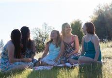 Девушки сидя совместно в травянистом поле с солнечным светом наверху Стоковые Изображения