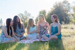 Девушки сидя совместно в травянистом поле с солнечным светом наверху Стоковое Изображение RF