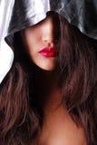 Девушки смотрят на при коричневые волосы и красные губы покрытые с серебристой хламидой крыто Стоковые Изображения RF