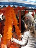 Девушки смотря оранжевую горжетку пера Стоковые Фото