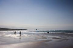 девушки собаки пляжа 2 гуляя детеныша Стоковые Фото