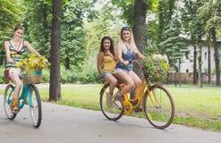 Девушки счастливого boho шикарные едут совместно на велосипедах в парке Стоковая Фотография