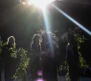 Девушки с венком wildflowers стоковые фотографии rf