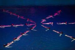 Девушки сделали линию в форме звезды в бассейне Стоковые Фото