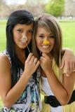 Девушки с одуванчиком Стоковые Фотографии RF